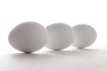 Eieren van M van Egmond