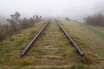 Oude spoorlijn €œBorkense Baan€ in de gemeente Winterswijk ge van Tonko Oosterink