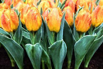 Geel rode tulpen van eric van der eijk