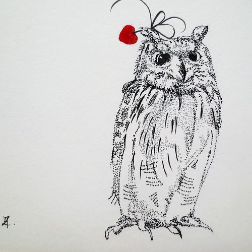 HeartFlow Owl sur
