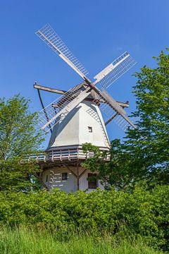 Hochzeitsmühle, Holländerwindmühle, Windmühle, westfälische Mühlenstraße, Tonnenheide, Rahden, Minde