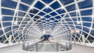 Den Haag Centraal: Perron van de Randstadrail van Erik Brons
