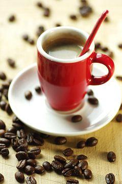 Frischer Arabica Kaffee