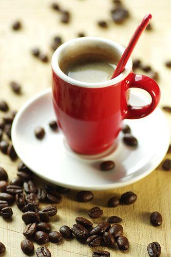 Frischer Arabica Kaffee von