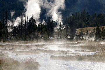 ochtend mist in Yellowstone van