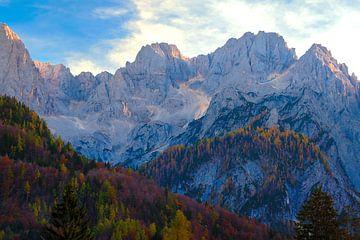 De bergen van Kranjska Gora