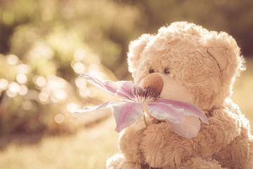 Teddybär mit Blume in sanften Retro-Farben von Lisette Rijkers