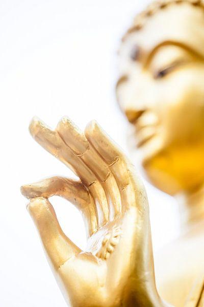 Hand van Boeddha van Marcel Derweduwen