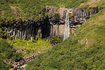 Svartifoss waterval IJsland von Menno Schaefer