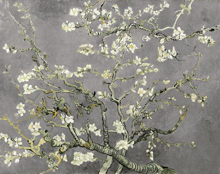 Variation der Mandelblüten von Vincent van Gogh in Hellgrau von Meesterlijcke Meesters