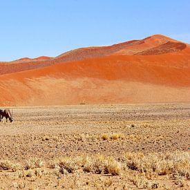 Gemsbok rode zandduinen woestijn, rust en ruimte van Inge Hogenbijl