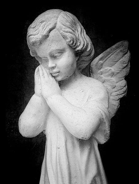 Angel van Jaco Verheul