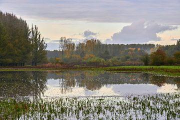 Herfst landschap weerspiegeld in grote waterpartij van Jenco van Zalk