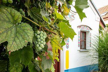 artistiek huisje in Tsjechië met druivenboom van Eric van Nieuwland