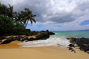 Tropisch strand op Hawaii