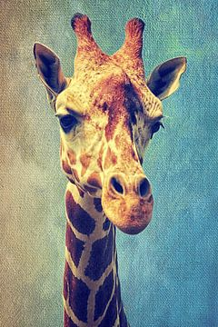 Die Giraffe sur Angela Dölling