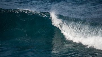 De Golven van Madeira van Hans Kool