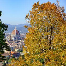 Uitzicht op de Duomo van Florence met herfstkleuren sur Erwin Blekkenhorst