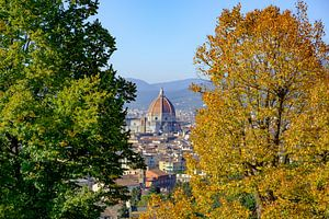 Uitzicht op de Duomo van Florence met herfstkleuren van