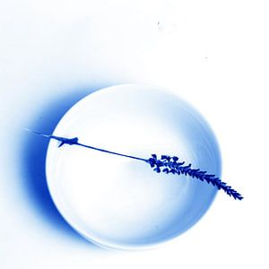 Delftsblauwe Tegel - 48