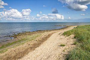 Waddenzee en Texels duinlandschap / Wadden Sea and Texel dune landscape