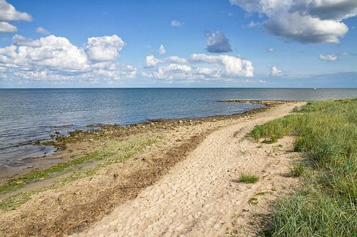 Waddenzee en Texels duinlandschap / Wadden Sea and Texel dune landscape van