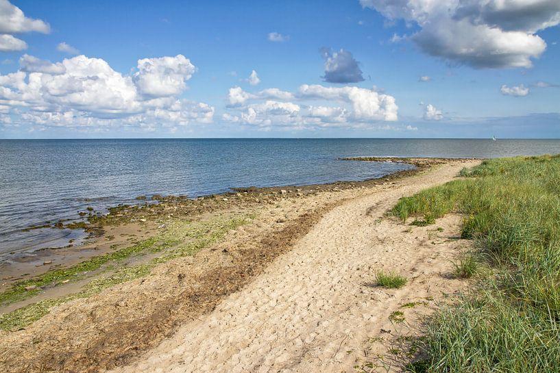Waddenzee en Texels duinlandschap / Wadden Sea and Texel dune landscape van Justin Sinner Pictures ( Fotograaf op Texel)