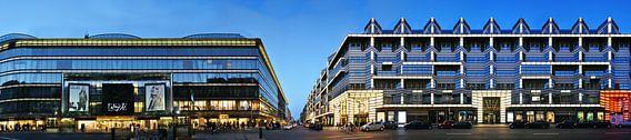 Berlin Friedrichstrasse Panorama van Panorama Streetline