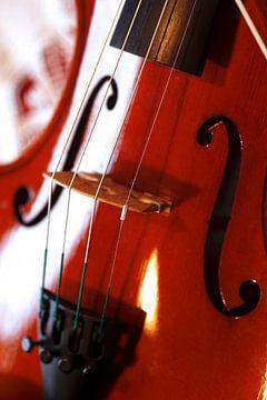 Violine von Thomas Jäger