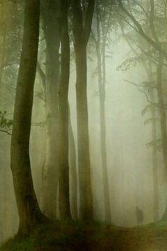Mensch im Wald van Heike Hultsch