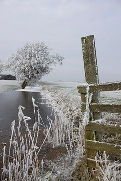 Winter van M Duizendstra