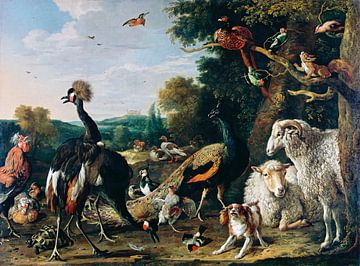 Tier vor der Arche Noah, Melchior d'Hondecoeter