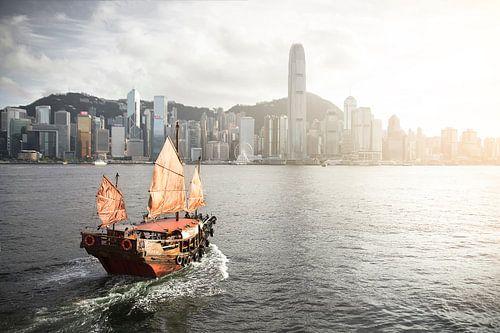 Dukling in HongKong von Claire Droppert