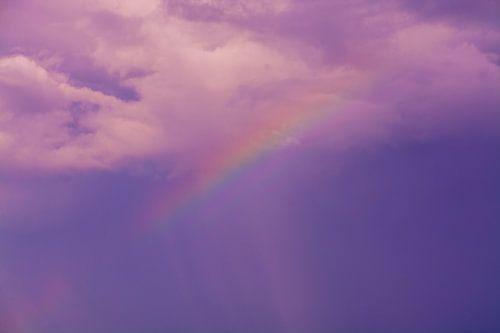 Alle kleuren van de Regenboog