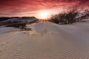Zonsondergang in duinen van het Westduinpark van