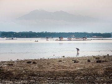 Philippinen - Insel Cebu - Ein früher Fischer in der Nähe von Moalboal von Rik Pijnenburg