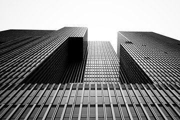 Der Rotterdam von Caught By Light