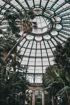 Gewächshäuser von Laeken, Brüssel, Belgien | Botanical Photoprint | Tumbleweed & Fireflies P von Eva Krebbers | Tumbleweed & Fireflies Photography