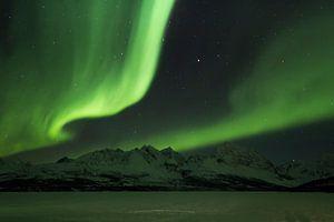 Noorderlicht boven Jaegervatnet