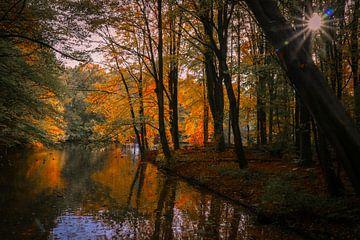 Herfst kleuren von Peter Heins