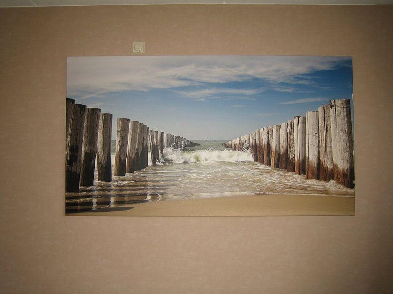 Klantfoto: strand, duinen en wind van Arjan van Duijvenboden