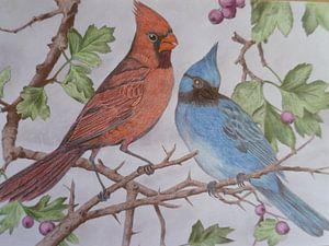 vogel duo van Edith Boogaard van den