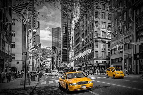 MANHATTAN 5th Avenue