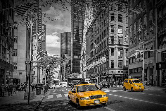 MANHATTAN 5th Avenue van Melanie Viola