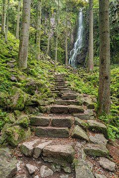 Burgbachwasserfall im Schwarzwald von Michael Valjak