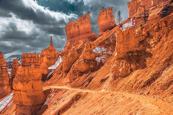 Wandelpad door Bryce Canyon, Utah van Rietje Bulthuis