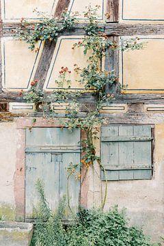 Wand aus Blau, Gelb und Grün | Altes überwuchertes Haus in Frankreich | Pastellfarbene Reisefotograf von Milou van Ham