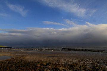Ameland /Mooie luchten von Rinnie Wijnstra