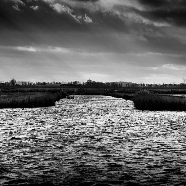 Wind und Winter im Wasserland von Rene  den Engelsman