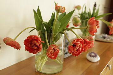 rood oranje pioen tulpen in een glazen vaas von Cora Unk